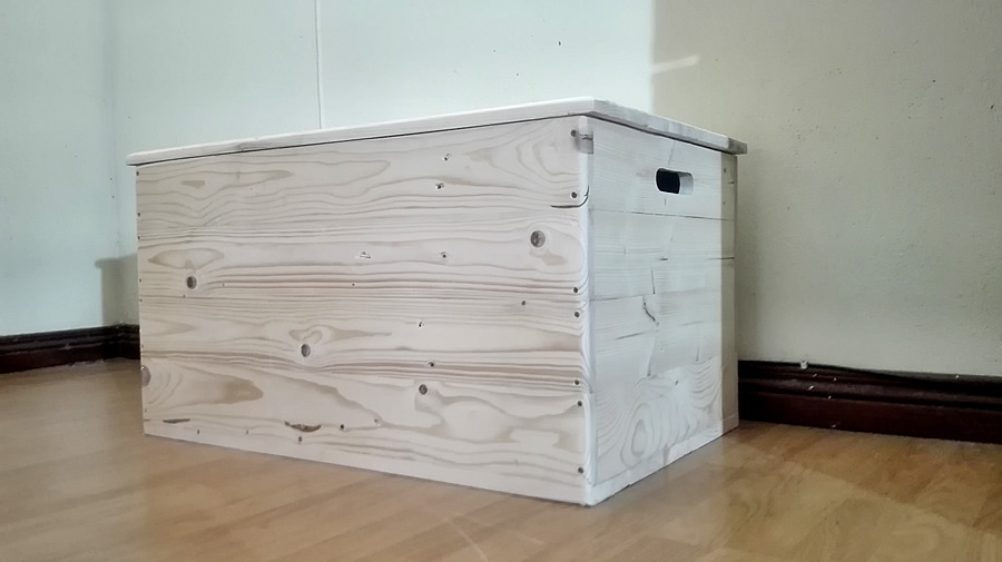Raw Storage Trunk | Large